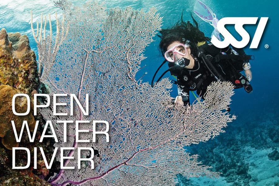 SSI open water diver certification