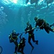 Local Dive is your chance to scuba dive in the mysterious waters of Tarragona, around the Port of Torredembarra, where our international SSI scuba diving center and school is found.