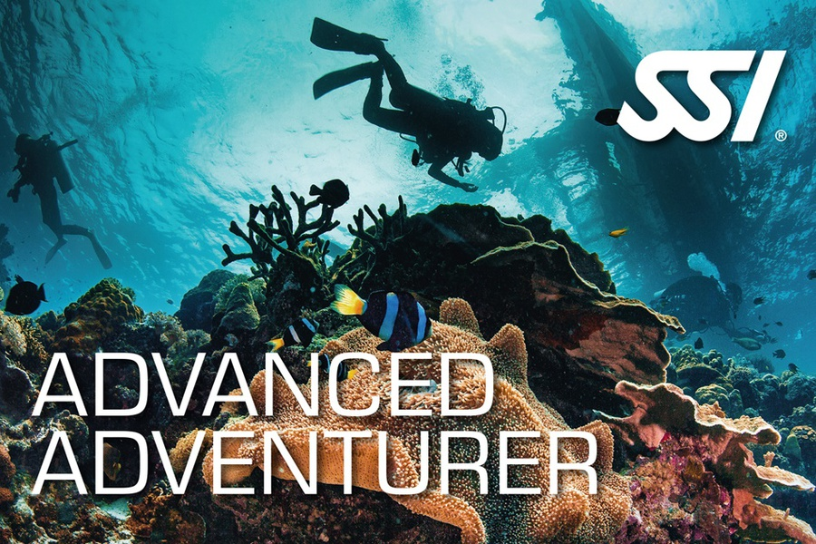 Advanced adventurer SSI card
